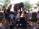 An elephant crew.